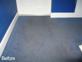 Domestic Carpet Cleaning - Ayrshire & Glasgow